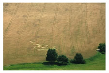 Crop circles below Bezdez Castle, Czech Republic